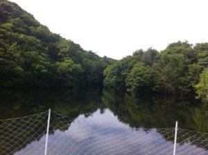 鴨猟で出猟する池