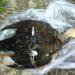 【鴨猟】出猟前に準備しておく道具を現役猟師が解説します